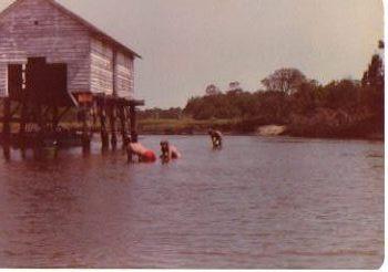 boat-house-1978.jpg