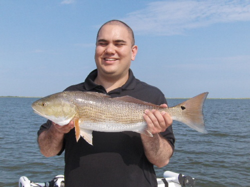 cape fear guide fishing report 39 s from cbfishing com