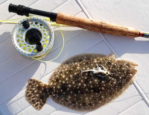 flounderfly.jpg
