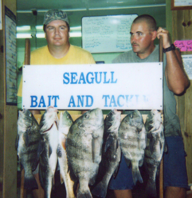 64-5_image_vp_fishing8-31-2005c.png